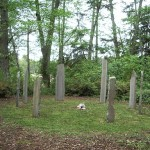 Whidbey Standing Stones #2